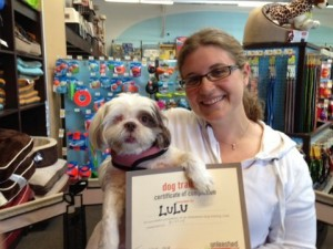 Lulu with Certificate
